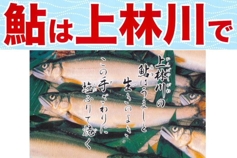 上林川 鮎友釣の解禁は6月20日