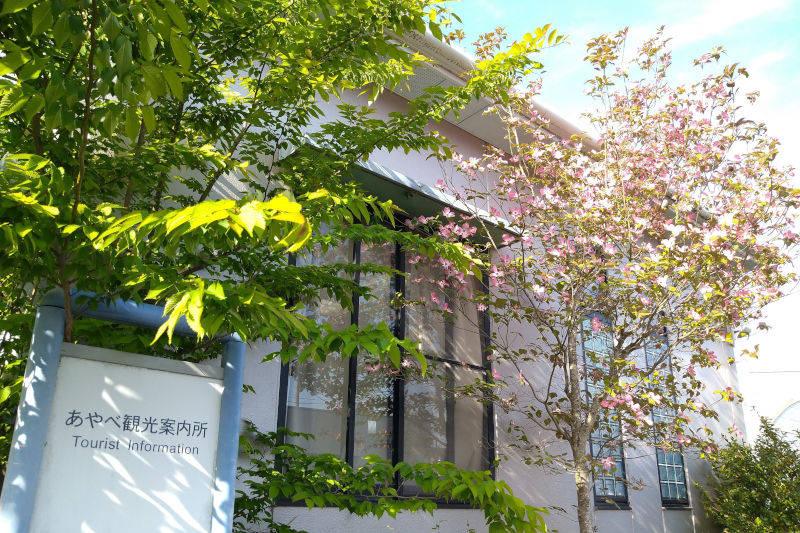 京都府緊急事態措置に係る対応について(8月20日から)